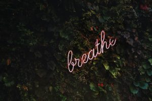 Self-care image of tree foliage with the word breathe among it