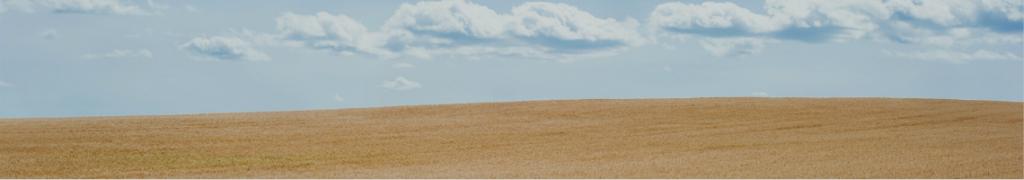 Prairie field with open sky.
